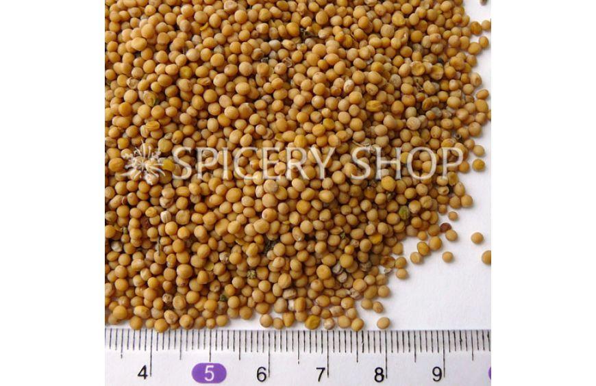 Горчица белая зерно